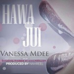 "NeW ViDeO AleRt: ""Hawajui""-Vanessa Mdee"